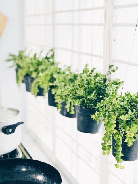 pots fleurs suspendus