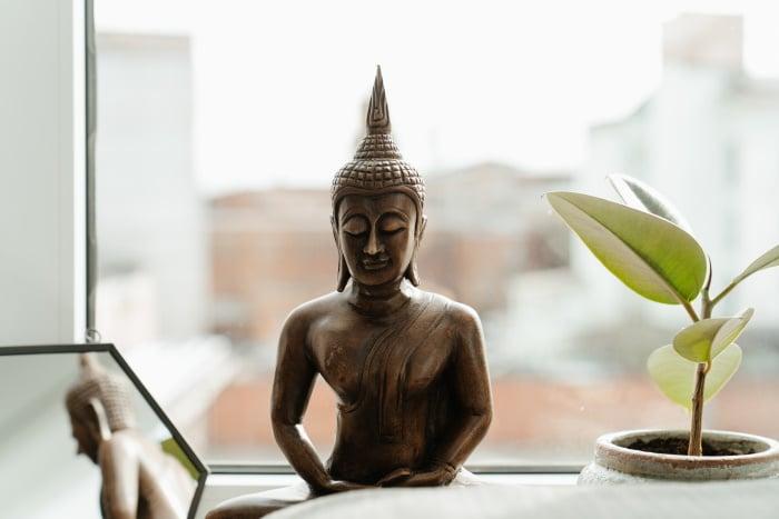 statue bouddha et plante